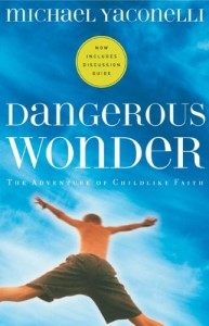 Dangerous-Wonder-graphic